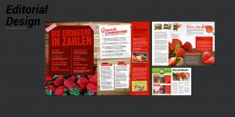 Editorial Design Impuls Agentur - Erdbeeren